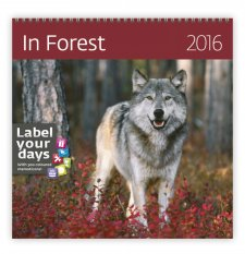 Kal. In Forest LP06-16