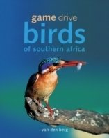 Game Drive Birds of Southern Africa