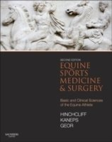 Equine Sports Medicine and Surgery, 2nd Ed.