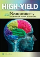 High-Yield(TM) Neuroanatomy, 5th Ed.