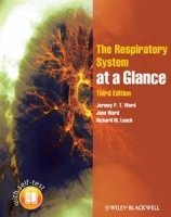 Respiratory System at Glance