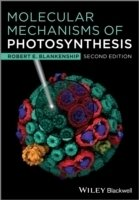 Molecular Mechanisms of Photosynthesis, 2nd ed.