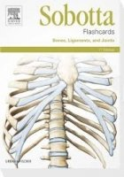 Sobotta Flashcards Bones, Ligaments and Joints