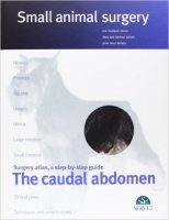 Small animal surgery : The Caudal Abdomen