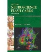 Netter´s Neuroscience Flash Cards
