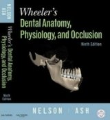 Wheeler´s Dental Anatomy, Physiology and Occlusion