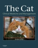 The Cat : Clinical Medicine and Management