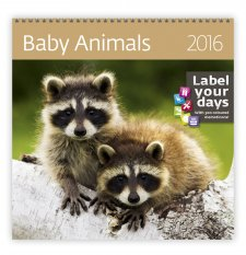 Kal. Baby Animals LP03-16