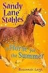 SANDY LANE STABLES: HORSE FOR THE SUMMER