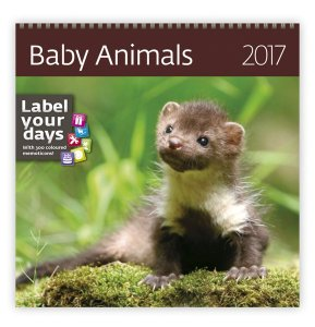 Baby Animals LP03-17