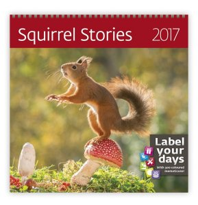 Squirrel Storius LP06-17