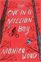 The One-in-a-Million Boy HB