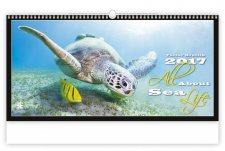 All About Sea Life N260-17
