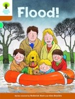 STAGE 8 MORE STORYBOOKS PACK (Oxford Reading Tree)