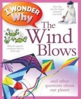 I WONDER WHY: THE WIND BLOWS