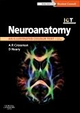 Neuroanatomy ICT