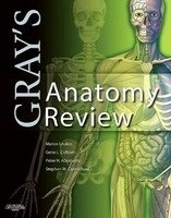 Gray´s Anatomy Review