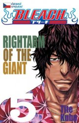 Bleach 5: Right Arm of the Giant - Tite Kubo