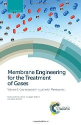 Membrane Engineering for the Treatment of Gases Volume 1: Gas-separation Issues with Membranes