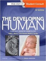 Developing Human : Clinically Oriented Embryology 10th Ed.