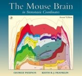 Mouse Brain in Stereotaxic Coordinates Pack