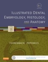 Illustrated Dental Embryology, Histology, and Anatomy, 4th ed.