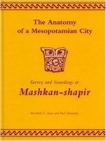 Anatomy of Mesopotamian City
