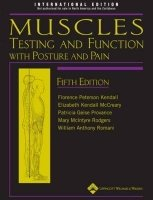 Muscles Testing and Function with Posture and Pain