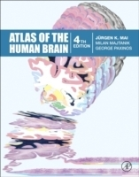 Atlas of the Human Brain, 4th ed. - Mai, Juergen K. , Majta...