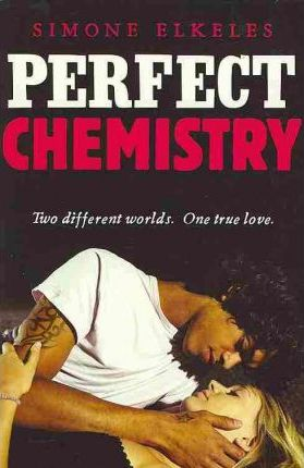 PERFECT CHEMISTRY - ELKELES, S.