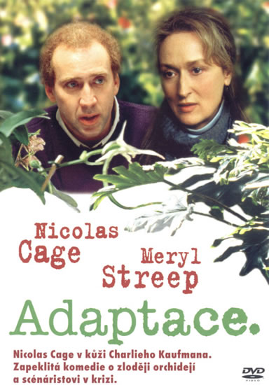 Adaptace - DVD