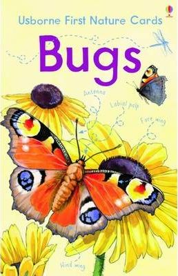 BUGS USBORNE NATURE CARDS - BONE, E.