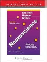 Lippincott´s Illustrated Review of Neuroscience