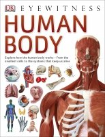 Human Body (Eyewitness)
