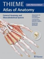 General Anatomy and Musculoskeletal System (THIEME Atlas of Anatomy) with Latin Nomenclature